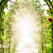 Flower garden with arches decorated with roses. - Stock Photo