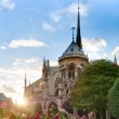 Sunset view of Notre Dame De Paris cathedral. — Stock Photo #12726058