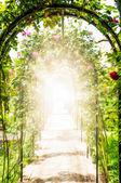 Jardín de flores con arcos decorados con rosas. — Foto de Stock