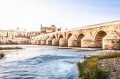 Cordoba bridge of Andalucia in Spain, Europe. — Stock Photo