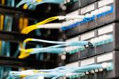 ópticas cabos ligados ao painel na sala do servidor. — Foto Stock