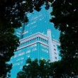 Business centre. Evening view through trees. - Foto Stock