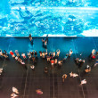 People watching huge aquarium in oceanarium. - Stock Photo