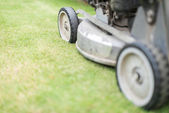 Cutting green grass in yard with lawnmower. — Стоковое фото