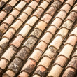 Stock Photo: Roof tile with leaves and water in rows.