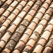 Roof tile with leaves and water in rows. — Stock Photo #25748005