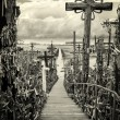 Stock Photo: Sky and hill of crosses near Siauliai, Lithuania.