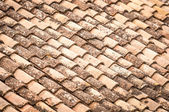 Roof tile with leaves and water in rows. — Stock Photo