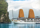 Ship in beautiful Halong bay — Stok fotoğraf