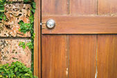 Door and wall with green — Stock Photo