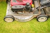 Lawnmower — Foto Stock
