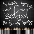 Back to school with pencils — Stock Vector