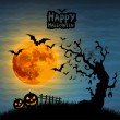 Stock Photo: Halloween night illustration - background with place for text