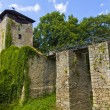 Ruin of castle Lukov — Stock Photo