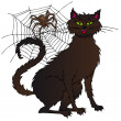 Cat and spider — Stock Vector
