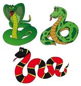 Various collection snake — Stock Vector