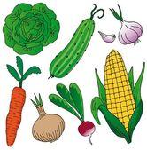 Vegetables on white background — Stock Vector