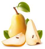 Rijpe peren met groene bladeren — Stockvector