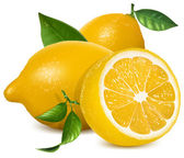 Fresh lemons with leaves — Stockvector