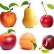 Collection of vector fruits. — Stock Vector