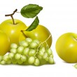 Green apples and grapes. — Stock Vector #33424669