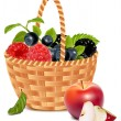 berries in the basket and apples. — Stock Vector