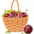 Ripe plums in the basket. — Stock Vector