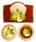 Photo-realistic vector green apples. — Stock Vector