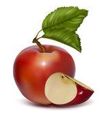 Apple. — Stock Vector