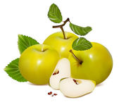 Gröna äpplen. — Stockvektor