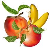 Vector ripe peach, apple and banan. — Cтоковый вектор