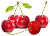 Cherries with water drops. — Stock Vector