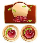 Photo-realistic vector cherries — Stock Vector