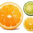 orange, lime and lemon. — Stock Vector
