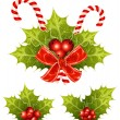 Christmas holly — Stock Vector #33449203