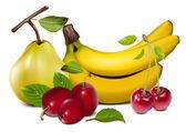 Photorealistic vector fruits — Stock Vector