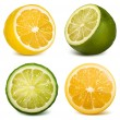 Citrus fruits  lime and lemon — 图库矢量图片