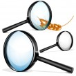 Vector magnifying glass — Stock Vector