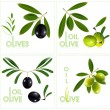 Green olives with leaves. — Stock vektor