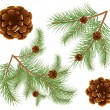 Pine cones with pine needles — Stockvectorbeeld