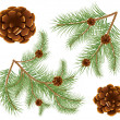 Pine cones with pine needles — 图库矢量图片