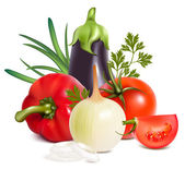 Colorful fresh group of vegetables. — Stock Vector