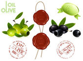 Sealing wax 100 oil olive. — Vector de stock