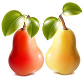 Ripe red and green pears — Stock Vector