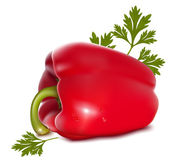 Pepper with drops of water and parsley. — Stock Vector