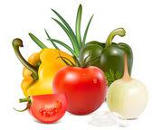 野菜. — ストックベクタ