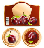 Design of packing plum jam jar. — Stock Vector