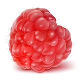 Ripe raspberry. — Stock Vector