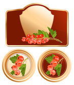 Red currant. — Stock Vector