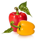 Peppers with leaves. — Stock Vector